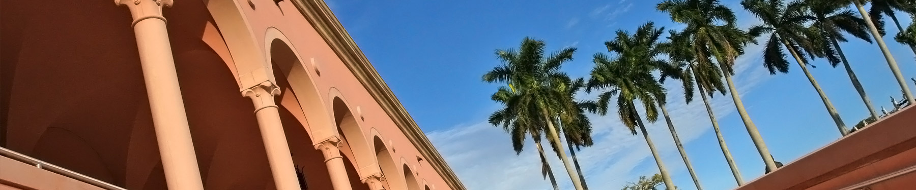 Breezy palms and stunning architecture at the Ringling Museum of Art